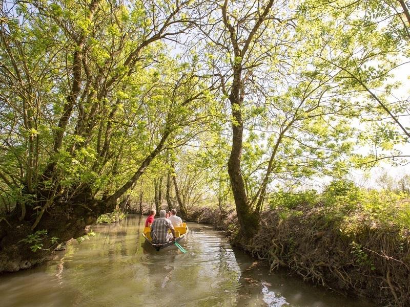 Séjour CSE Immersion dans le Marais Poitevin et Puy du Fou
