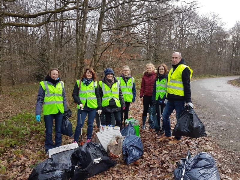 Team building ramassage de déchets en forêt