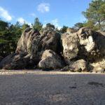 Séminaire Fontainebleau Challenges et survie