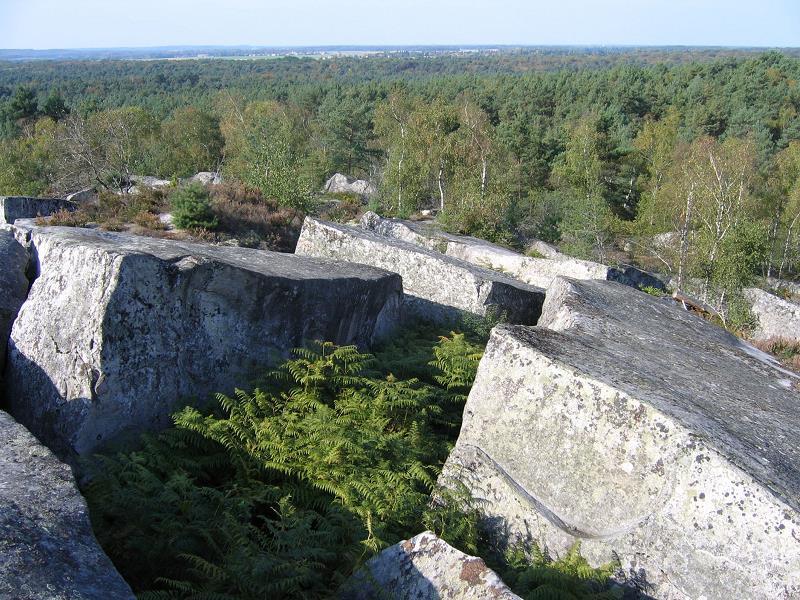Séminaire Orientation Climat à Fontainebleau Barbizon