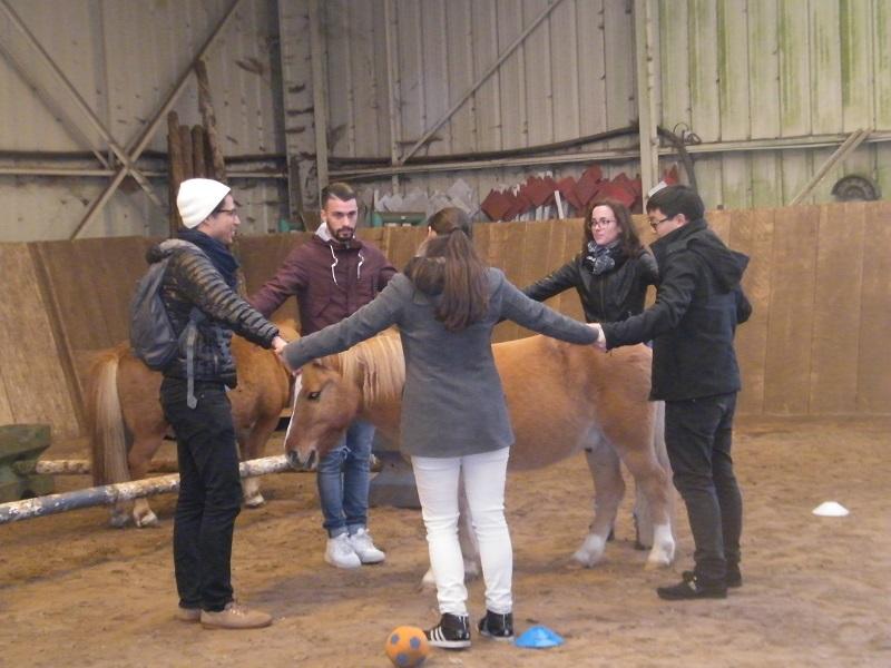 team building nature : Cheval et communication
