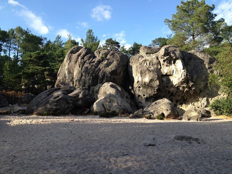 seminaire-nature-rse-fontainebleau