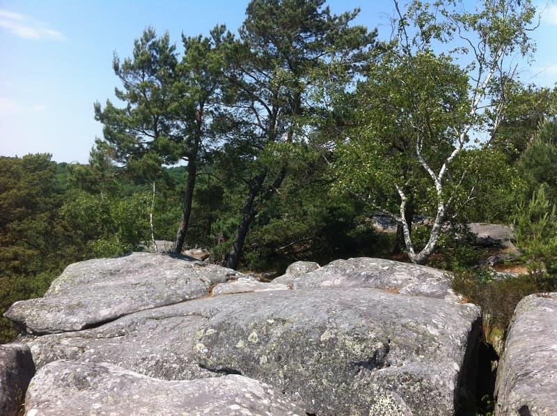 Séminaire Fontainebleau