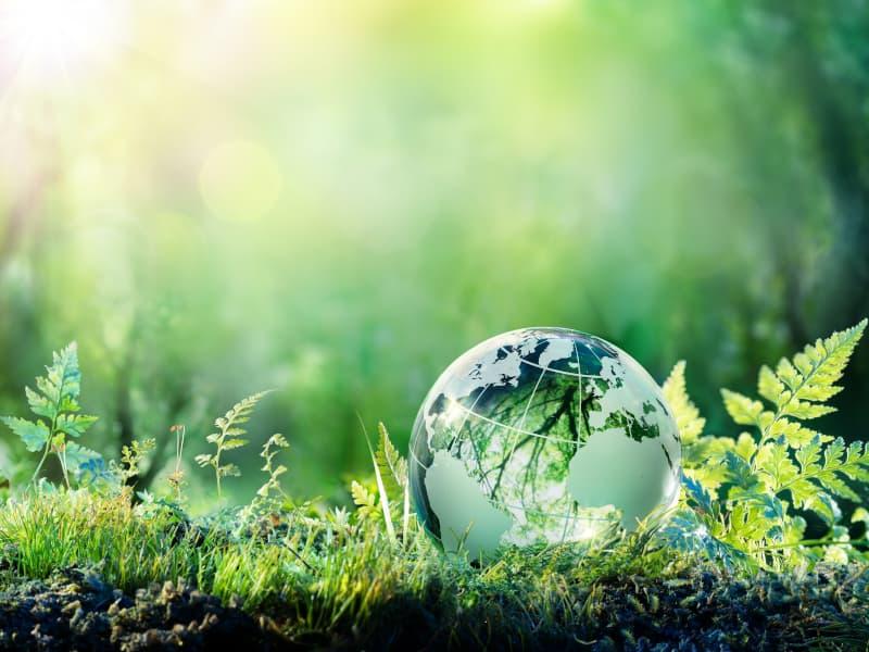 Passez au séminaire éco-responsable pour 2021 !